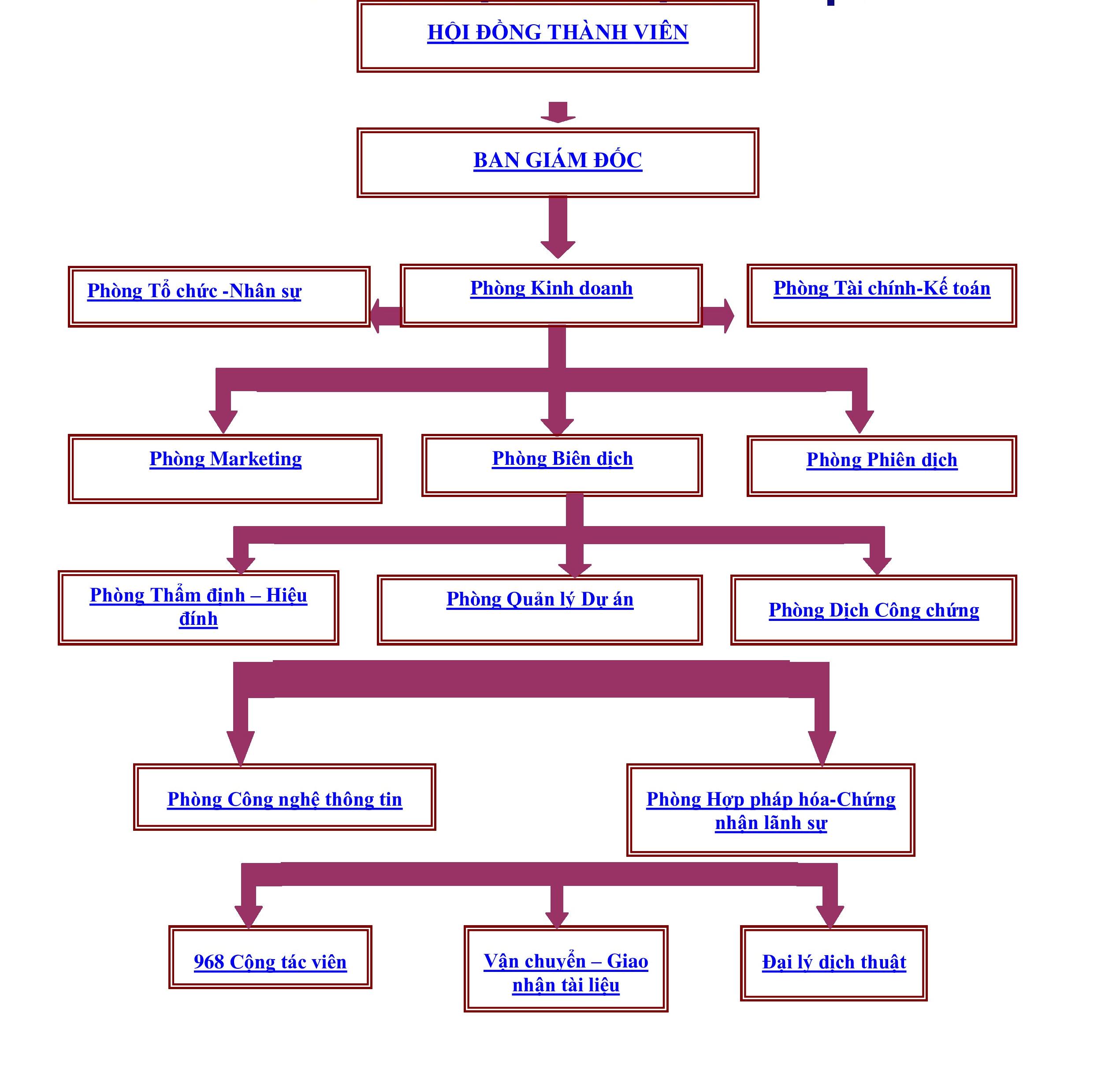 sơ đồ tổ chức panda